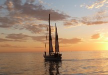 Sunset Kidd Sailing Cruises and Yacht Sales
